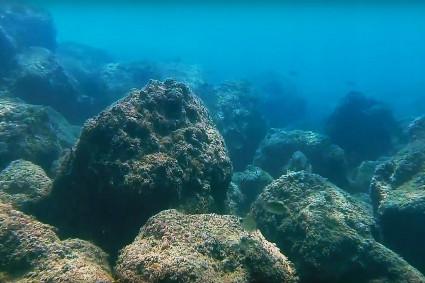 צלילה בחוף שמורת אכזיב - מערות אכזיב 6