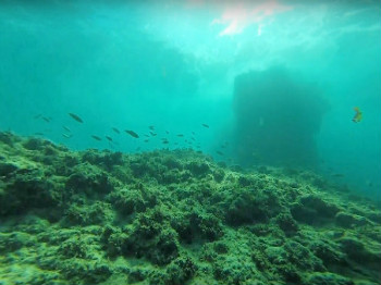 צלילה בשמורת חוף אכזיב - מנהרת אכזיב