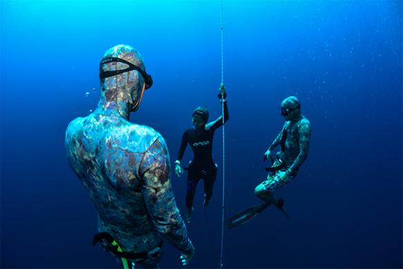 צלילה חופשית - לוח פעילות