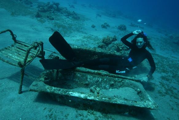 צלילה חופשית - קורסים