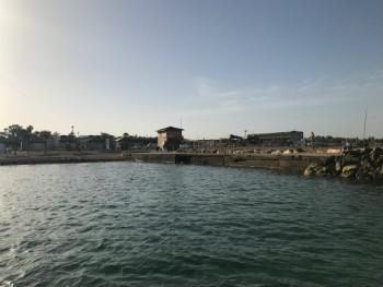 ביטוח צלילה התאחדות הצלילה בישראל