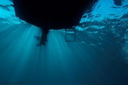 צלילה בצפון - נקרות ראש הנקרה 6