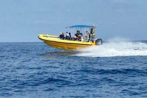 שייט סירות טורנדו - ספארי ים 5
